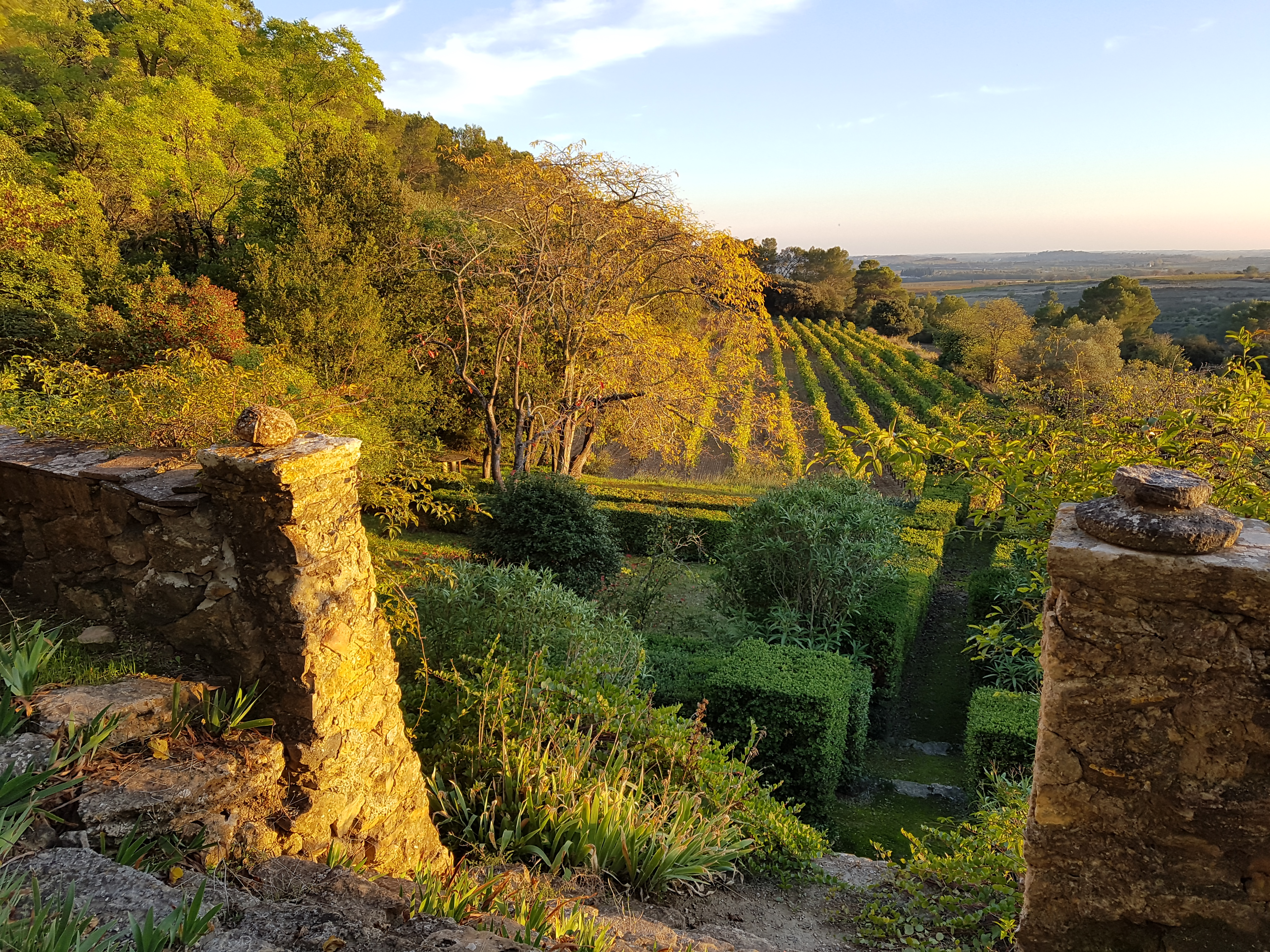 vin du languedoc domaine verena wyss
